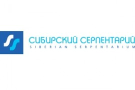 Novosibirsk serp